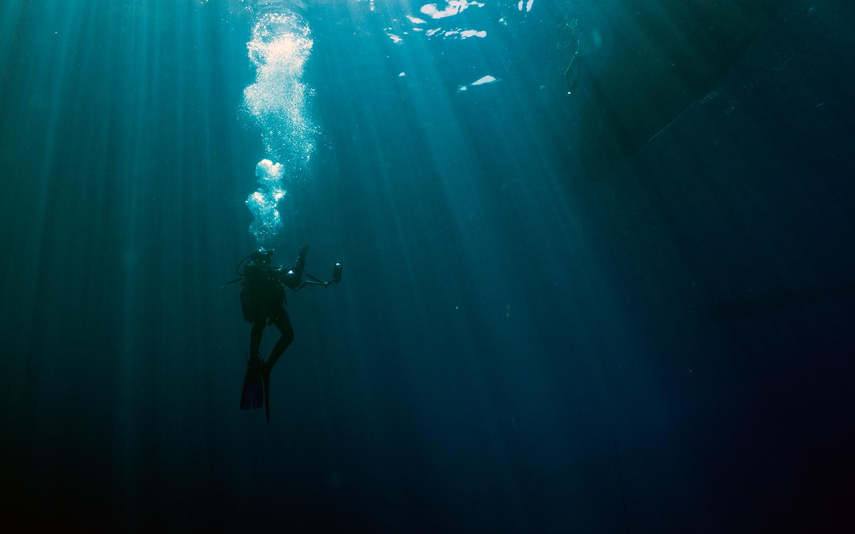 Ausflüge ins Meer
